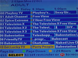 List of sky adult channels