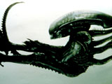 Alien voted 'scariest movie monster'