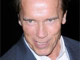 Schwarzenegger confirms 'Expendables' cameo