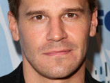 Boreanaz, Panettiere to present at Emmys