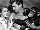 Fans want BAFTA for 'Tarzan' chimp