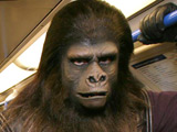 'Planet of the Apes' reboot still a go?