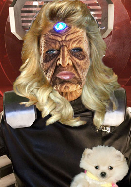 Paris Hilton to play the 'Bride of Davros'