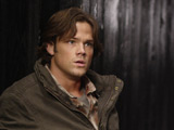 Padalecki engaged to 'Supernatural' co-star