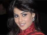 Genelia D'Souza: 'I am working hard'