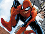 'Spider-Man' musical casts Peter Parker