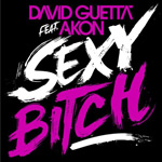 David Guetta ft. Akon: 'Sexy Bitch'
