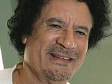 Gaddafi translator 'quits mid-speech'