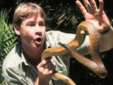 Steve Irwin 'spoke through psychic'