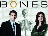 Robert Englund to guest on 'Bones'